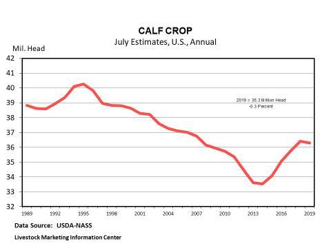 Graphic -- Annual U.S. Calf Crop