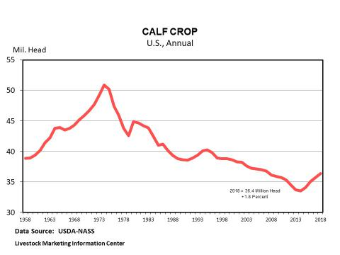 Graphic -- Annual U.S. Calf Crop