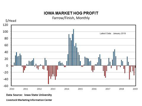 Graphic -- Monthly Market Hog Profit, ISU